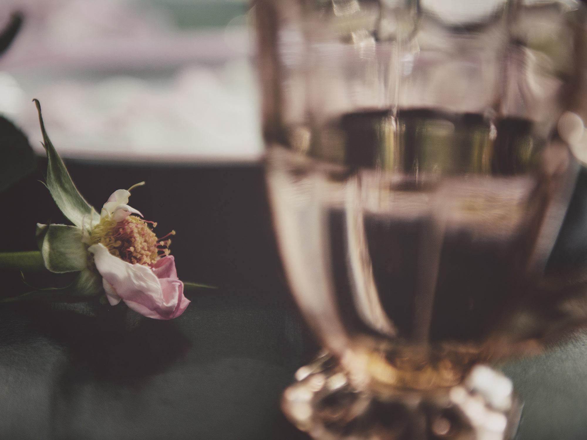 roses-13